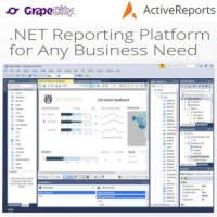 台灣白金級代理商 GrapeCity ActiveReports 13 .NET報表工具