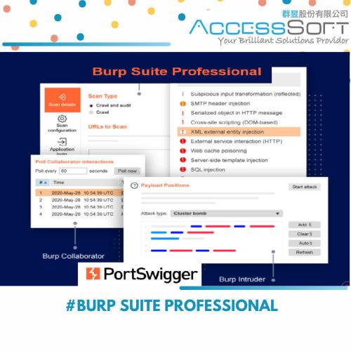 Burp Suite Professional 網站弱點檢測工具(年租版)