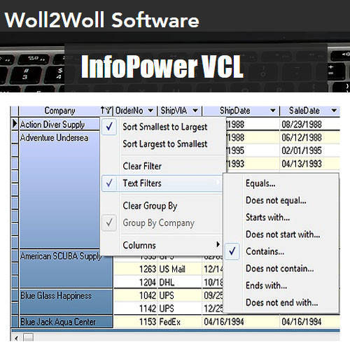 InfoPower VCL 資料庫開發視覺化軟體